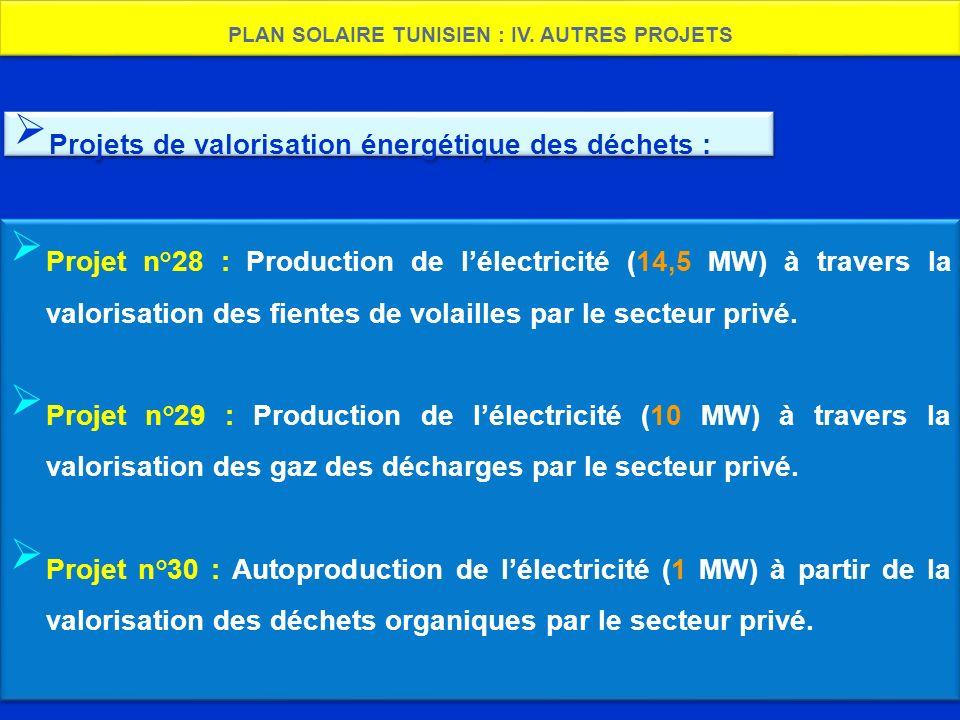 PLAN SOLAIRE TUNISIEN : IV. AUTRES PROJETS Projet n°28 : Production de lélectricité (14,5 MW) à travers la valorisation des fientes de volailles par l