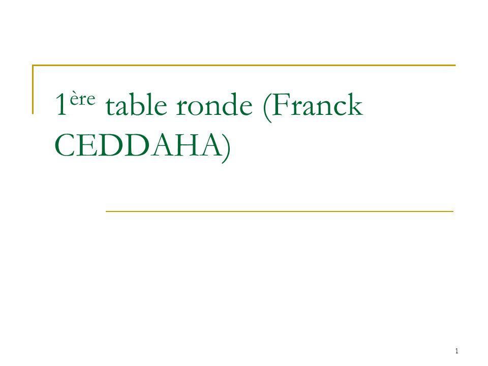 1 1 ère table ronde (Franck CEDDAHA)