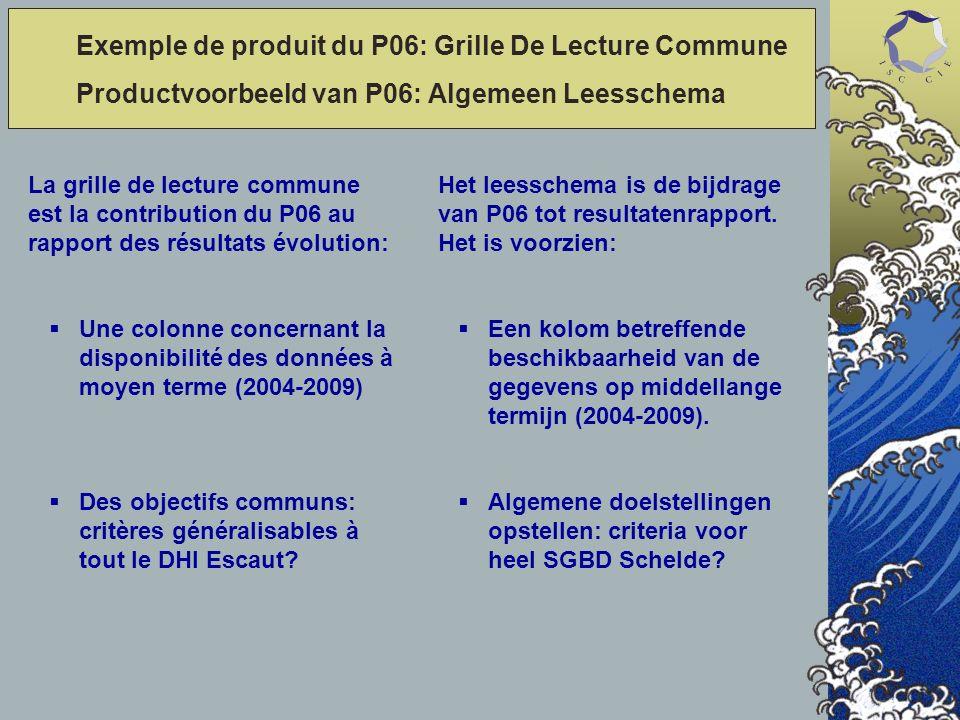 La grille de lecture commune est la contribution du P06 au rapport des résultats évolution: Une colonne concernant la disponibilité des données à moyen terme (2004-2009) Des objectifs communs: critères généralisables à tout le DHI Escaut.
