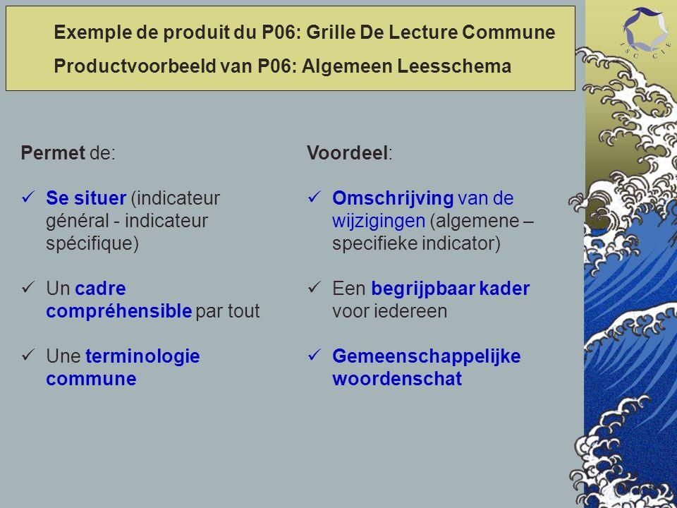 Permet de: Se situer (indicateur général - indicateur spécifique) Un cadre compréhensible par tout Une terminologie commune Voordeel: Omschrijving van de wijzigingen (algemene – specifieke indicator) Een begrijpbaar kader voor iedereen Gemeenschappelijke woordenschat Exemple de produit du P06: Grille De Lecture Commune Productvoorbeeld van P06: Algemeen Leesschema