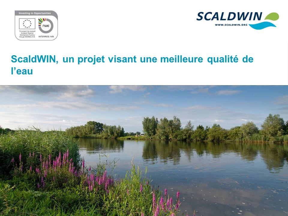 ScaldWIN, un projet visant une meilleure qualité de leau