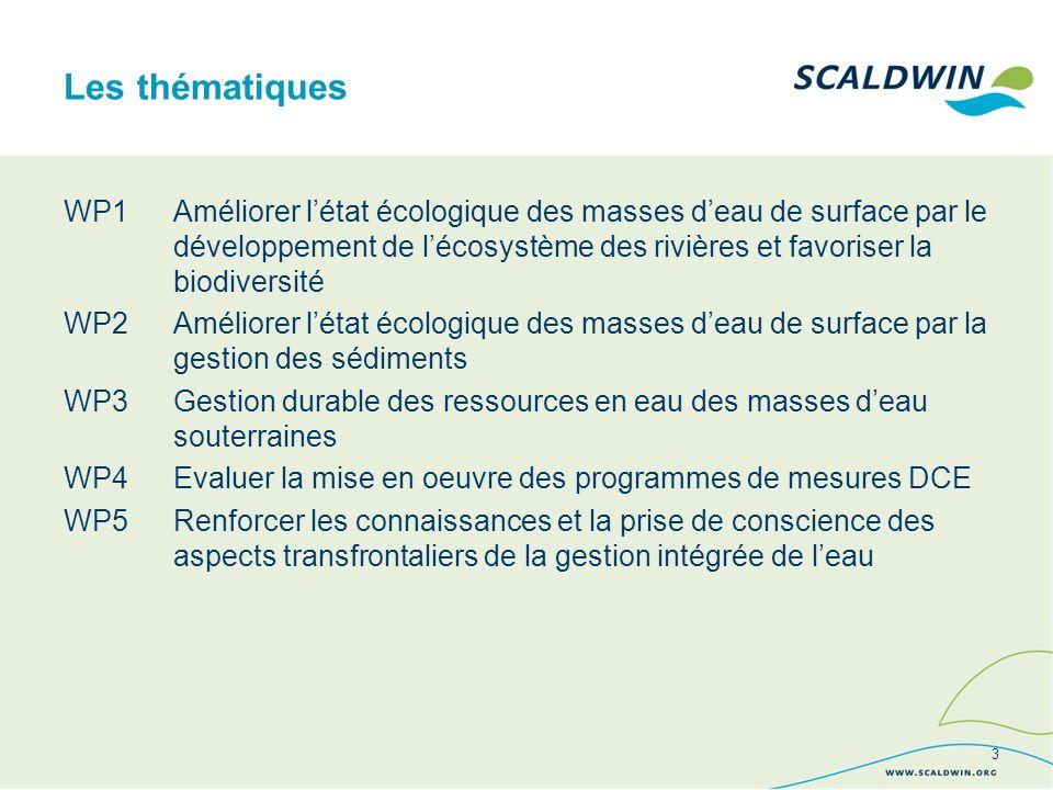 WP1Améliorer létat écologique des masses deau de surface par le développement de lécosystème des rivières et favoriser la biodiversité WP2 Améliorer létat écologique des masses deau de surface par la gestion des sédiments WP3Gestion durable des ressources en eau des masses deau souterraines WP4Evaluer la mise en oeuvre des programmes de mesures DCE WP5Renforcer les connaissances et la prise de conscience des aspects transfrontaliers de la gestion intégrée de leau Les thématiques 3