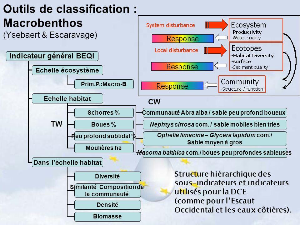 Outils de classification : Macrobenthos (Ysebaert & Escaravage) Echelle écosystème Echelle habitat Dans léchelle habitat Schorres % Boues % Peu profon