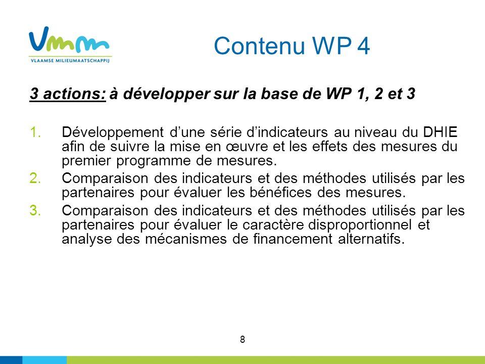 8 Contenu WP 4 3 actions: à développer sur la base de WP 1, 2 et 3 1.Développement dune série dindicateurs au niveau du DHIE afin de suivre la mise en