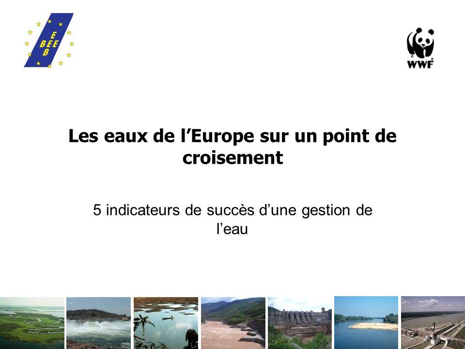 1 Les eaux de lEurope sur un point de croisement 5 indicateurs de succès dune gestion de leau