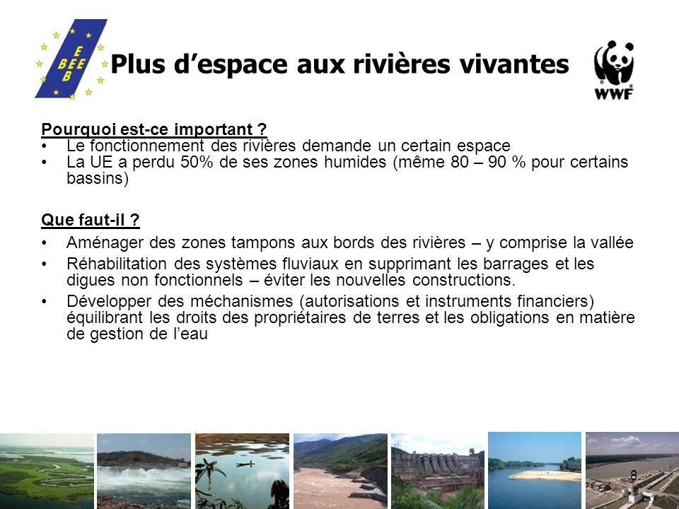 8 Plus despace aux rivières vivantes Pourquoi est-ce important ? Le fonctionnement des rivières demande un certain espace La UE a perdu 50% de ses zon