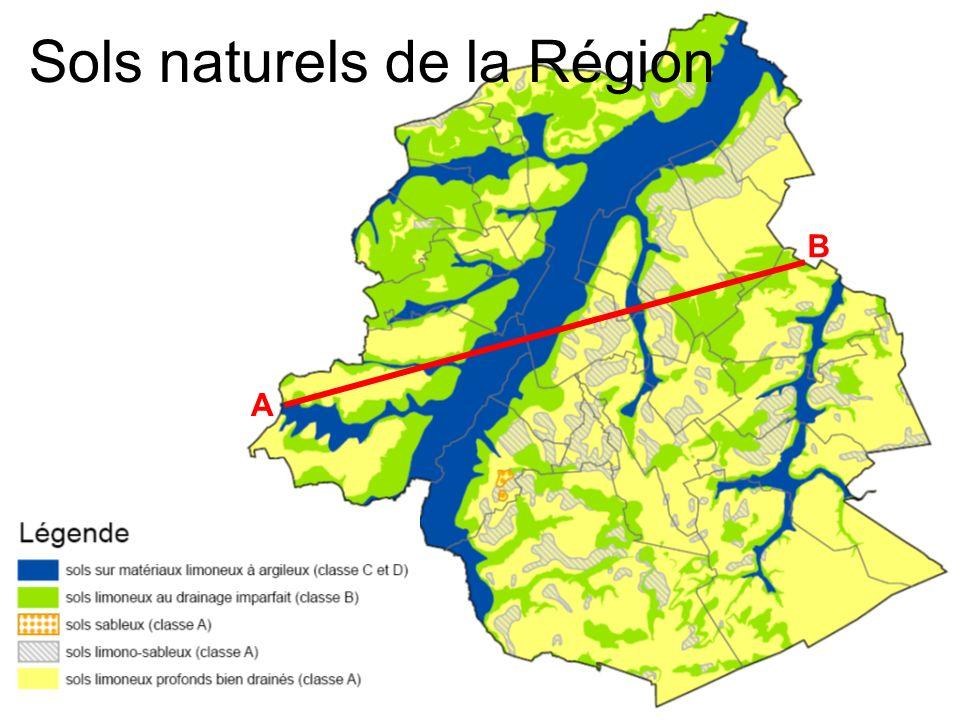 A B Sols naturels de la Région
