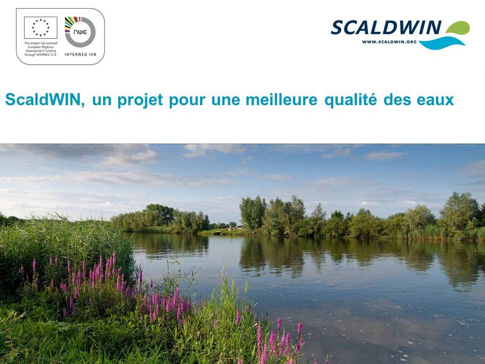 ScaldWIN, un projet pour une meilleure qualité des eaux