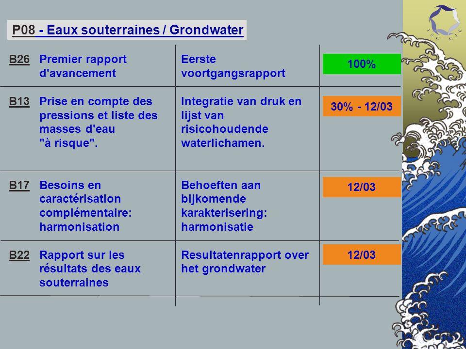 P08 - Eaux souterraines / Grondwater Premier rapport d avancement Prise en compte des pressions et liste des masses d eau à risque .