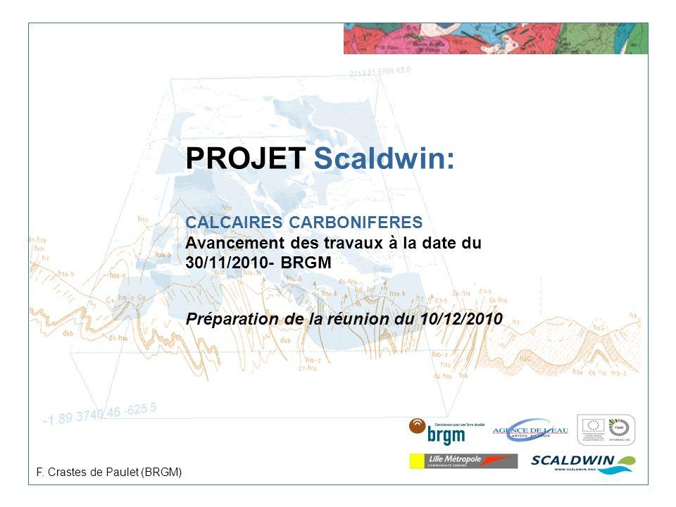 PROJET Scaldwin: CALCAIRES CARBONIFERES Avancement des travaux à la date du 30/11/2010- BRGM Préparation de la réunion du 10/12/2010 F. Crastes de Pau