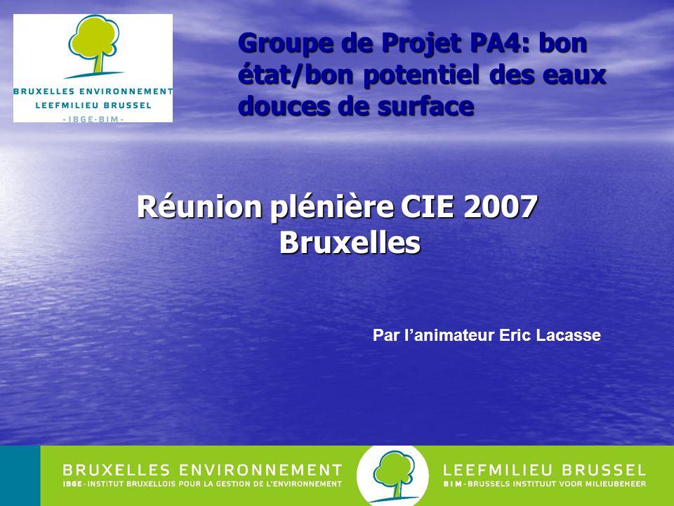 1 Groupe de Projet PA4: bon état/bon potentiel des eaux douces de surface Réunion plénière CIE 2007 Bruxelles Par lanimateur Eric Lacasse
