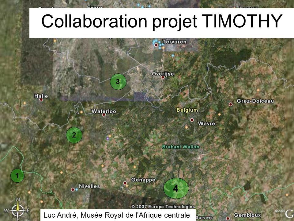 1 4 3 2 Collaboration projet TIMOTHY Luc André, Musée Royal de l Afrique centrale