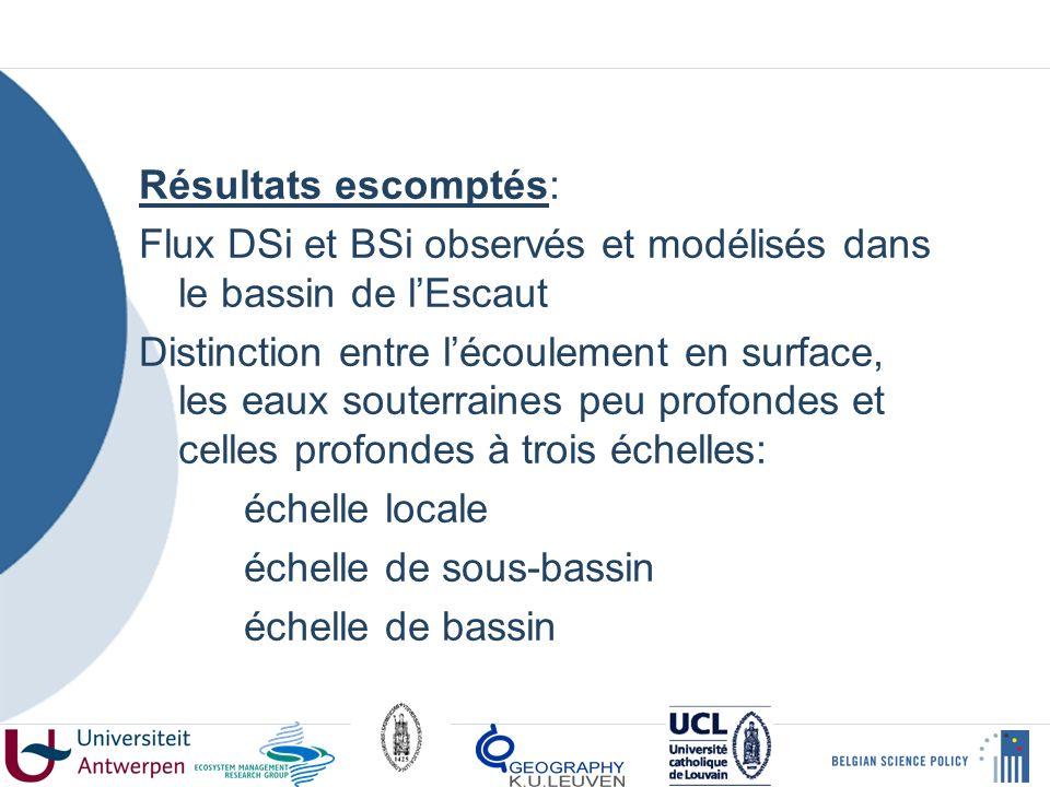 Résultats escomptés: Flux DSi et BSi observés et modélisés dans le bassin de lEscaut Distinction entre lécoulement en surface, les eaux souterraines peu profondes et celles profondes à trois échelles: échelle locale échelle de sous-bassin échelle de bassin