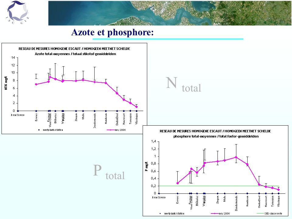 Azote et phosphore: N total P total