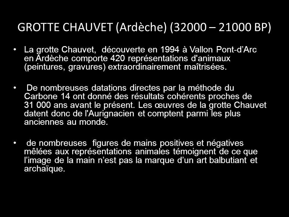 GROTTE CHAUVET (Ardèche) (32000 – 21000 BP) La grotte Chauvet, découverte en 1994 à Vallon Pont-dArc en Ardèche comporte 420 représentations d'animaux