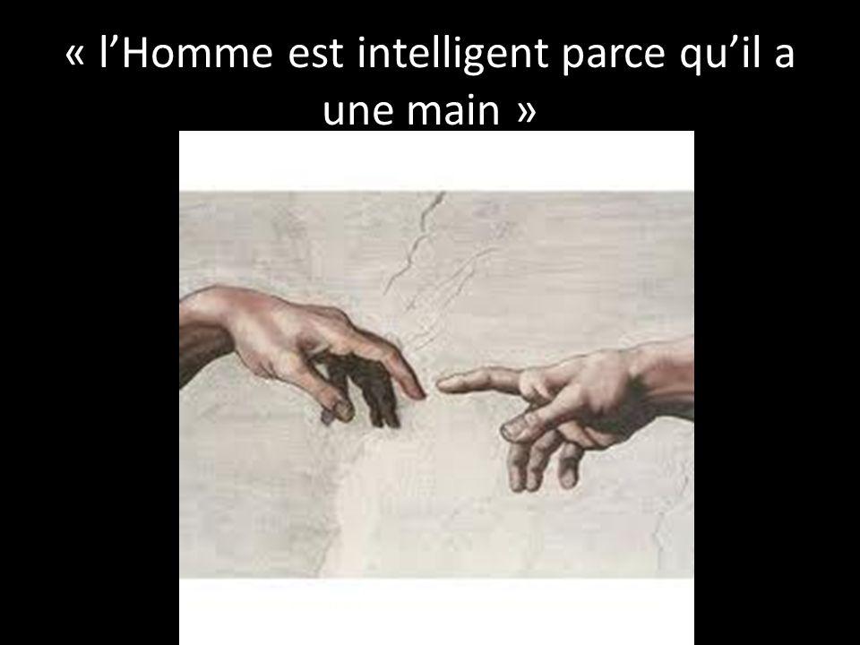 « lHomme est intelligent parce quil a une main »