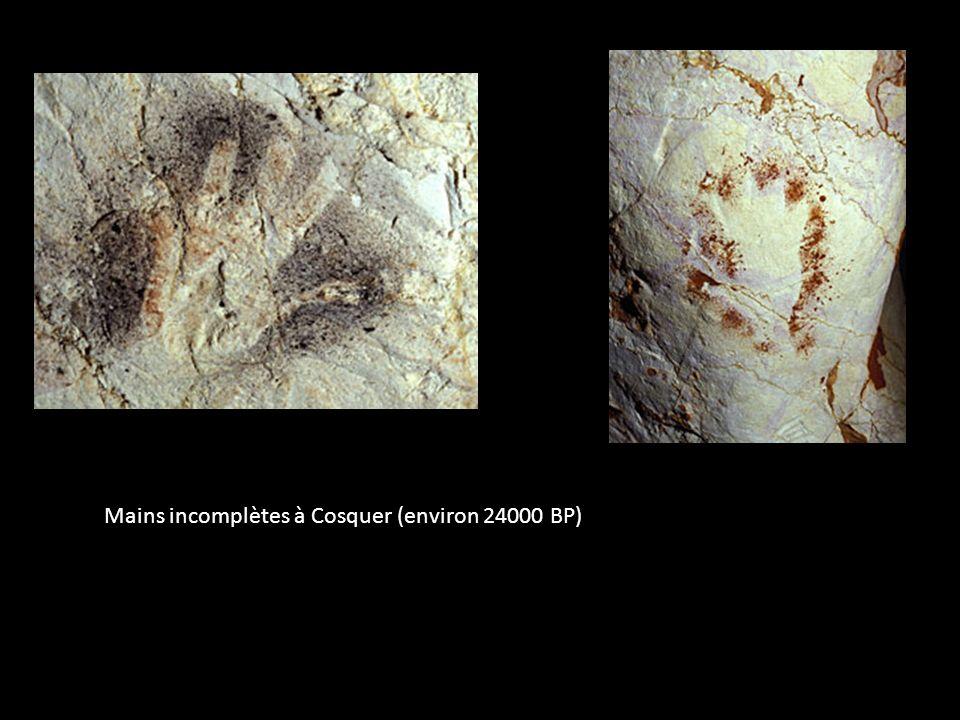 Mains incomplètes à Cosquer (environ 24000 BP)