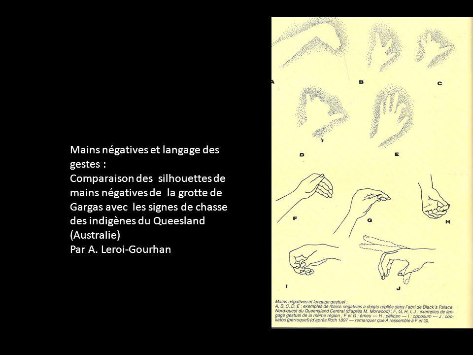Mains négatives et langage des gestes : Comparaison des silhouettes de mains négatives de la grotte de Gargas avec les signes de chasse des indigènes