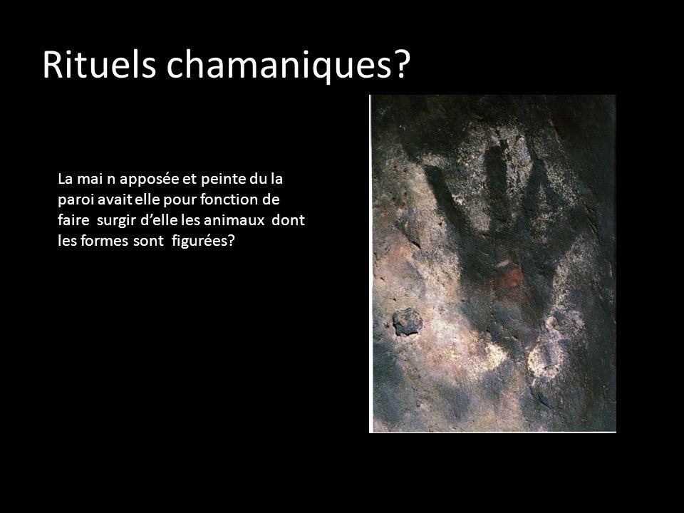 Rituels chamaniques? La mai n apposée et peinte du la paroi avait elle pour fonction de faire surgir delle les animaux dont les formes sont figurées?