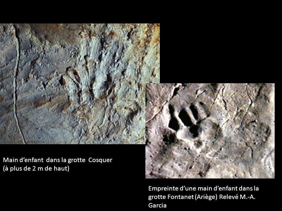 Grotte Chauvet – Frise des rhinocéros rouges On distingue sur la droite du panneau quatre mains positives (droites et gauches) et une main négative.