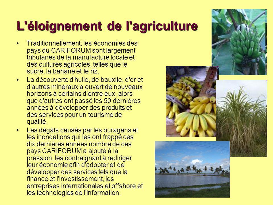 L éloignement de l agriculture Traditionnellement, les économies des pays du CARIFORUM sont largement tributaires de la manufacture locale et des cultures agricoles, telles que le sucre, la banane et le riz.