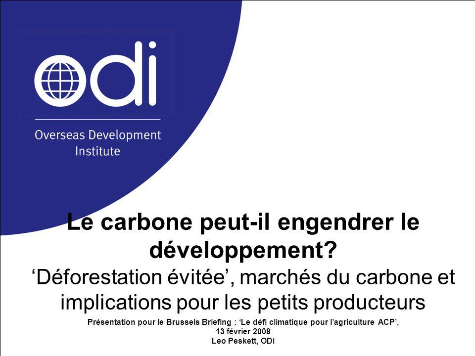 Le carbone peut-il engendrer le développement? Déforestation évitée, marchés du carbone et implications pour les petits producteurs Présentation pour