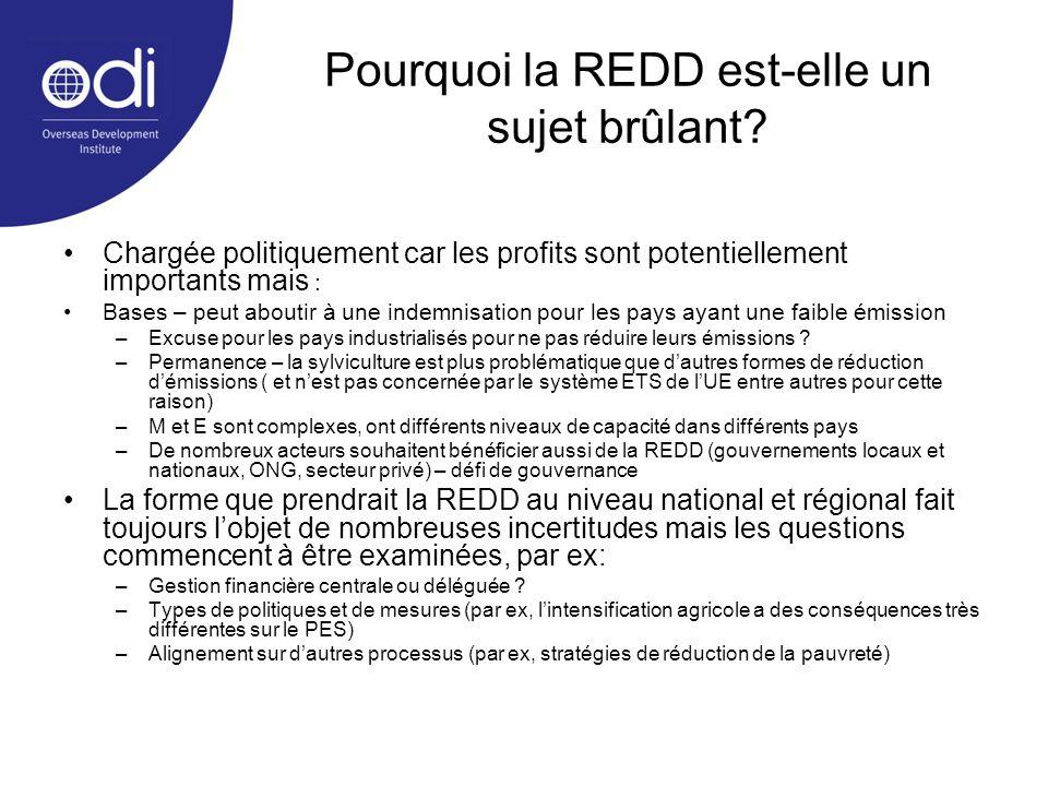 Pourquoi la REDD est-elle un sujet brûlant? Chargée politiquement car les profits sont potentiellement importants mais : Bases – peut aboutir à une in