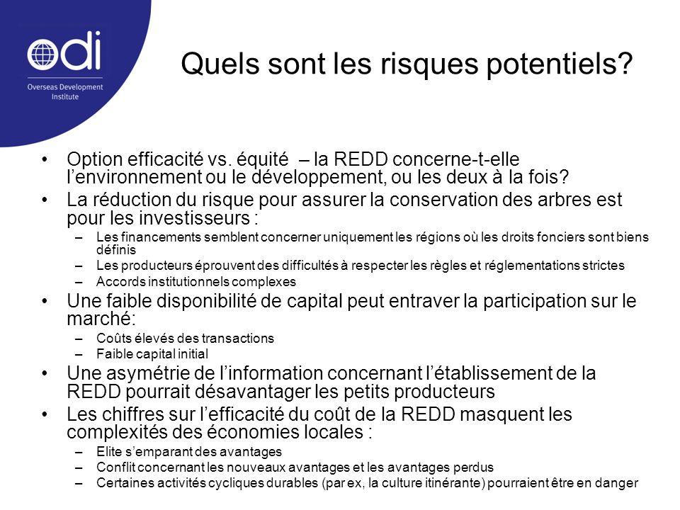 Quels sont les risques potentiels? Option efficacité vs. équité – la REDD concerne-t-elle lenvironnement ou le développement, ou les deux à la fois? L