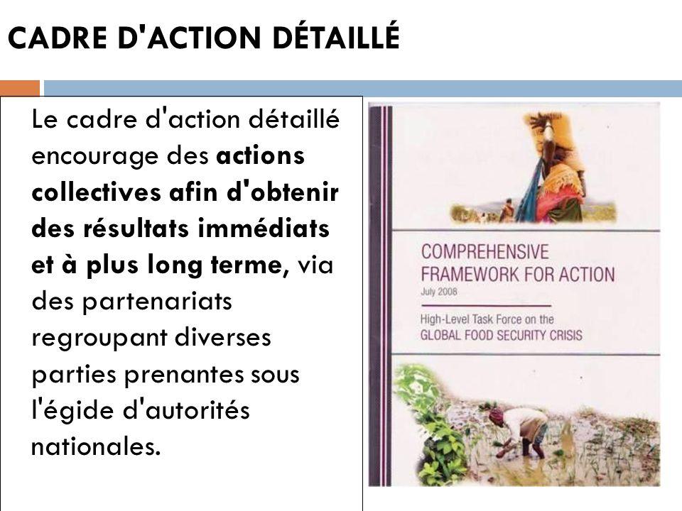 CADRE D'ACTION DÉTAILLÉ Le cadre d'action détaillé encourage des actions collectives afin d'obtenir des résultats immédiats et à plus long terme, via