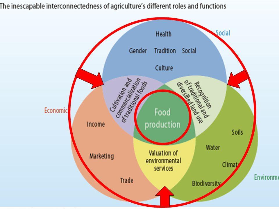 Évolution du modèle et de la focalisation en matière de R&D Les défis essentiels de l'agriculture : la multifonctionnalité