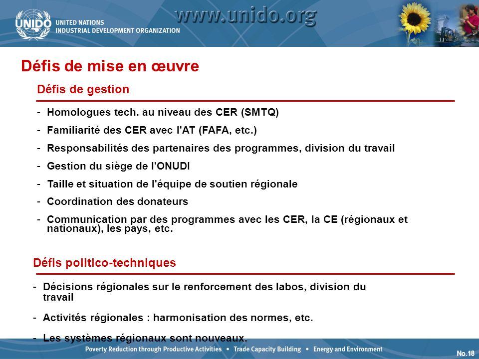 No.18 Défis de gestion -Homologues tech.