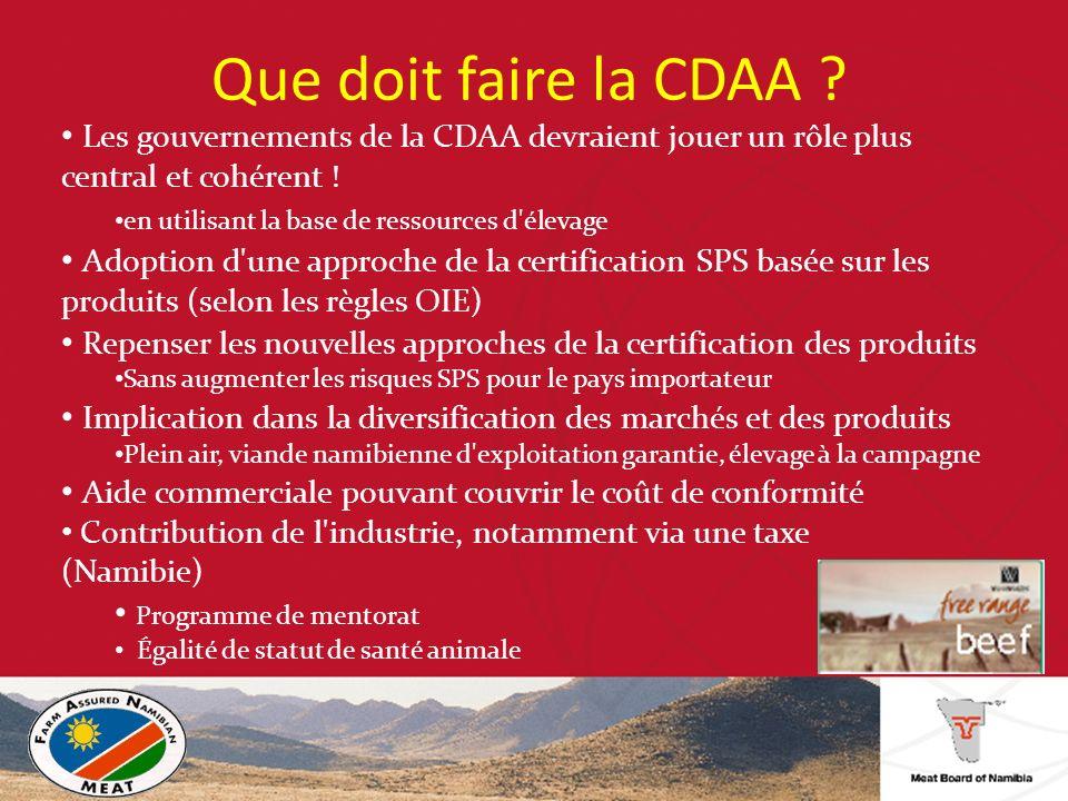 Que doit faire la CDAA .