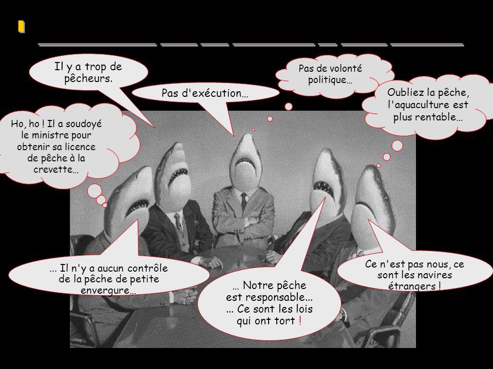 10 e Forum annuel sur la crise mondiale de la pêche Pas de volonté politique… Ho, ho ! Il a soudoyé le ministre pour obtenir sa licence de pêche à la
