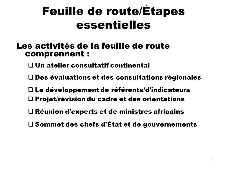 7 Feuille de route/Étapes essentielles Les activités de la feuille de route comprennent : Un atelier consultatif continental Des évaluations et des co