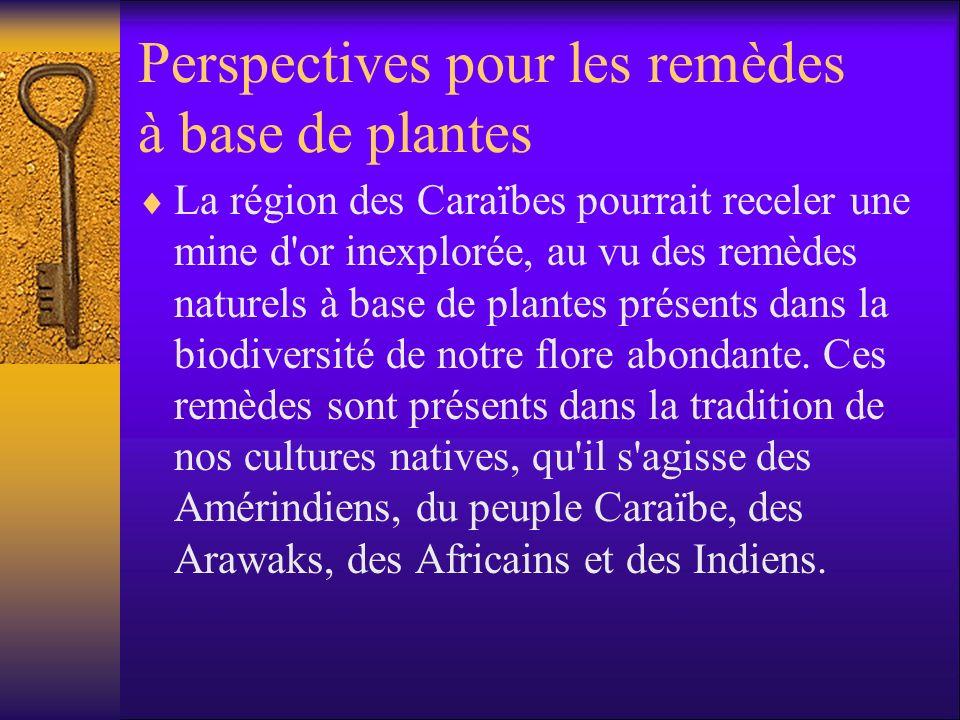 Perspectives pour les remèdes à base de plantes La région des Caraïbes pourrait receler une mine d or inexplorée, au vu des remèdes naturels à base de plantes présents dans la biodiversité de notre flore abondante.