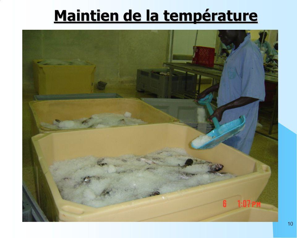 10 Maintien de la température