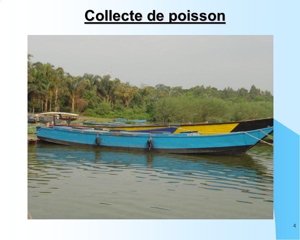 4 Collecte de poisson