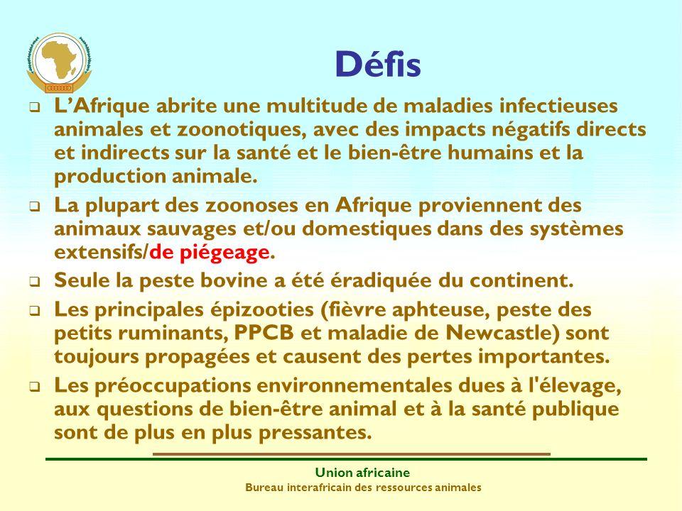 Union africaine Bureau interafricain des ressources animales LAfrique abrite une multitude de maladies infectieuses animales et zoonotiques, avec des