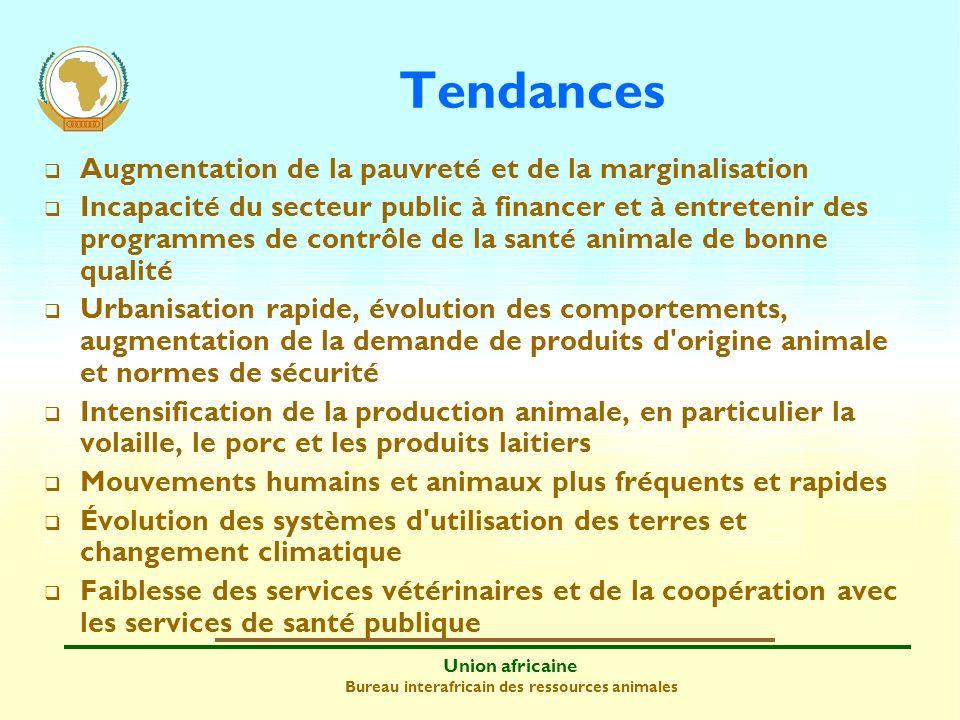 Union africaine Bureau interafricain des ressources animales Moins de protéines animales précieuses pour les producteurs, en particulier les agriculteurs et les gardiens de troupeaux, ainsi que les consommateurs (faim, malnutrition et régime alimentaire de mauvaise qualité) Santé et bien-être humains médiocres Entrave à la productivité (viande, œufs, lait, cuir et peau) et à la fertilité animales Accès limité à des marchés internes, régionaux et internationaux lucratifs Diminution de la contribution des ressources animales à la lutte contre la pauvreté, à la sécurité alimentaire et à la croissance économique Impact des épizooties et des zoonoses (1)