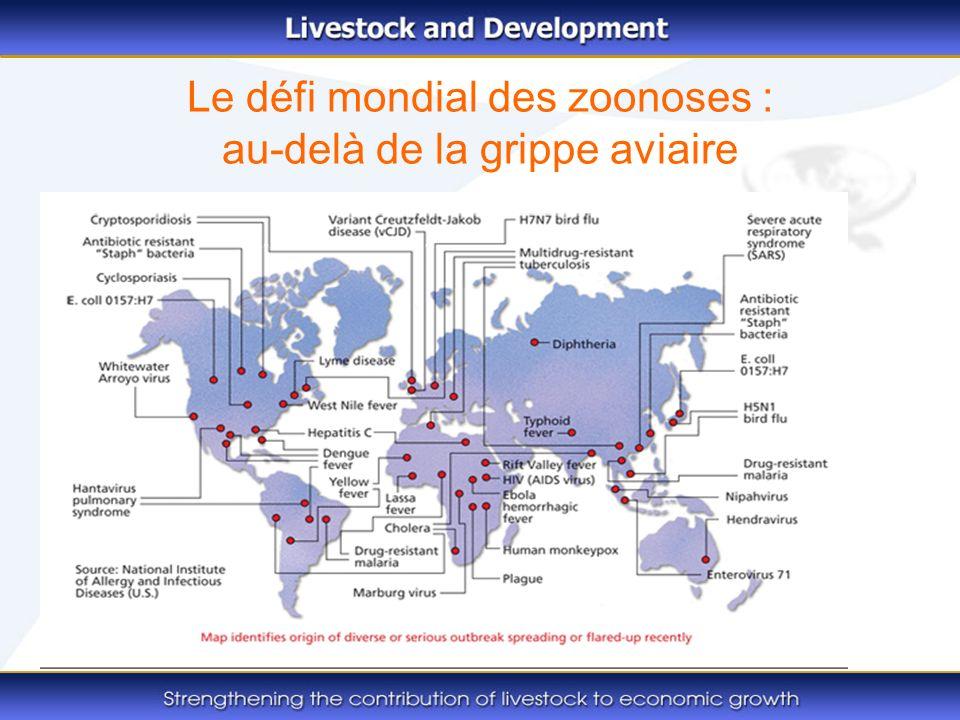 Le défi mondial des zoonoses : au-delà de la grippe aviaire