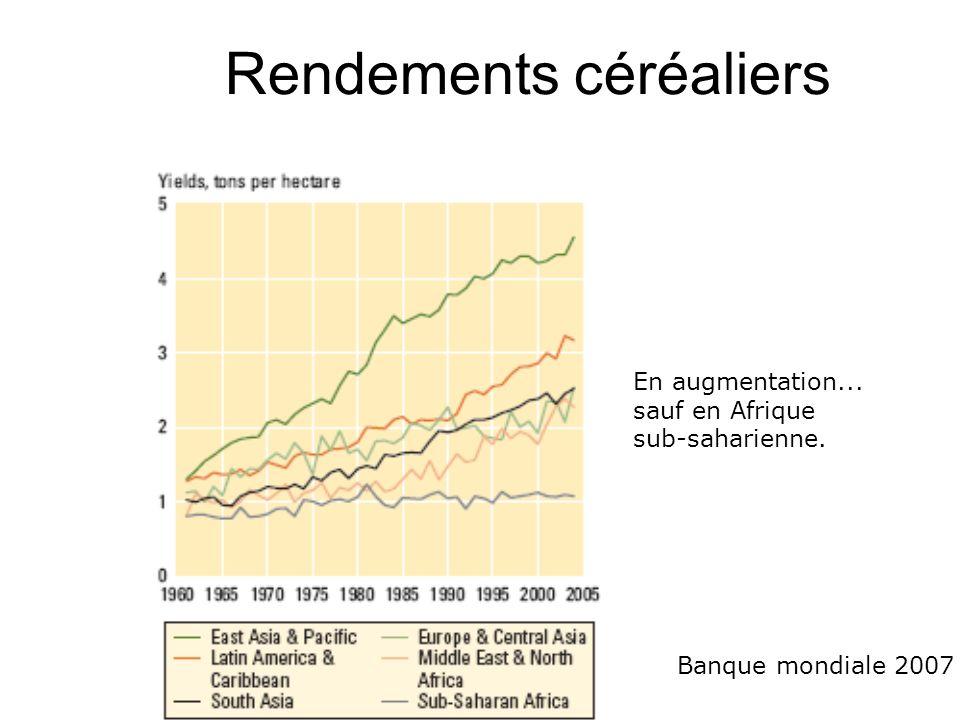 Rendements céréaliers En augmentation... sauf en Afrique sub-saharienne. Banque mondiale 2007