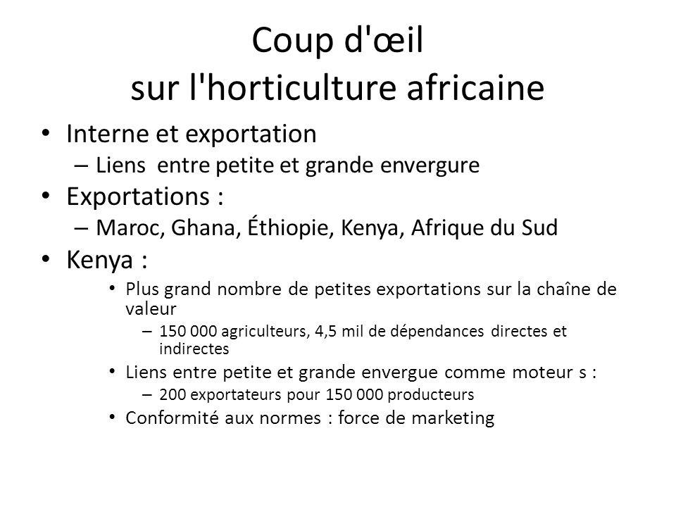 Coup d'œil sur l'horticulture africaine Interne et exportation – Liens entre petite et grande envergure Exportations : – Maroc, Ghana, Éthiopie, Kenya