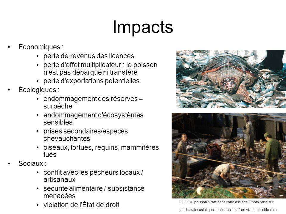 Impacts EJF : Du poisson piraté dans votre assiette. Photo prise sur un chalutier asiatique non immatriculé en Afrique occidentale Économiques : perte