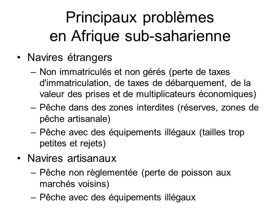 Principaux problèmes en Afrique sub-saharienne Navires étrangers –Non immatriculés et non gérés (perte de taxes d'immatriculation, de taxes de débarqu