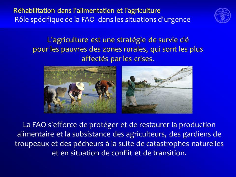 L'agriculture est une stratégie de survie clé pour les pauvres des zones rurales, qui sont les plus affectés par les crises. La FAO s'efforce de proté