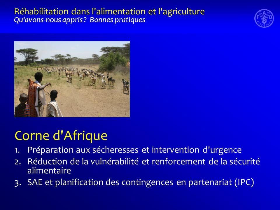 Corne d Afrique 1.Préparation aux sécheresses et intervention d urgence 2.Réduction de la vulnérabilité et renforcement de la sécurité alimentaire 3.SAE et planification des contingences en partenariat (IPC) Réhabilitation dans l alimentation et l agriculture Qu avons-nous appris .