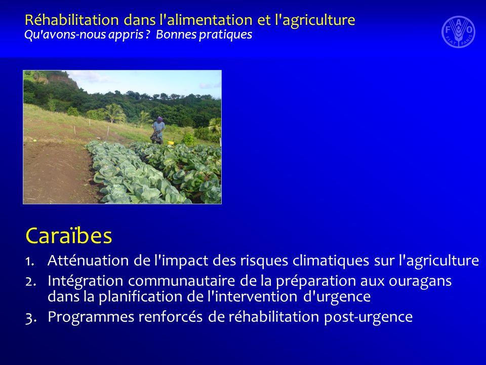 Caraïbes 1.Atténuation de l impact des risques climatiques sur l agriculture 2.Intégration communautaire de la préparation aux ouragans dans la planification de l intervention d urgence 3.Programmes renforcés de réhabilitation post-urgence Réhabilitation dans l alimentation et l agriculture Qu avons-nous appris .