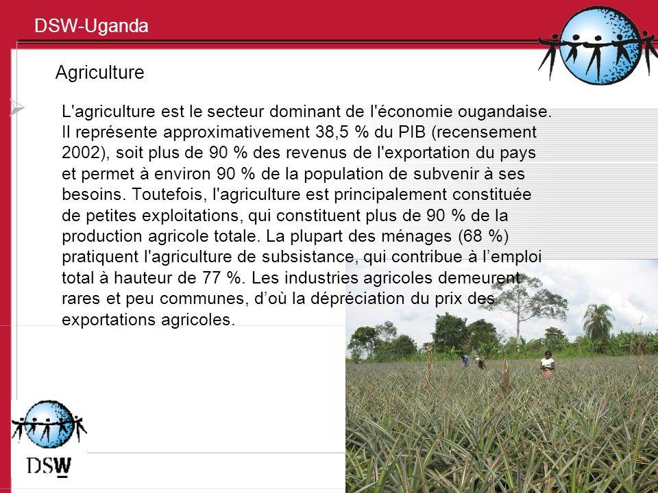 DSW-Uganda Agriculture L'agriculture est le secteur dominant de l'économie ougandaise. Il représente approximativement 38,5 % du PIB (recensement 2002