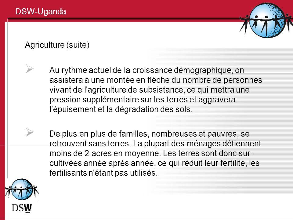 DSW-Uganda Agriculture (suite) Au rythme actuel de la croissance démographique, on assistera à une montée en flèche du nombre de personnes vivant de l