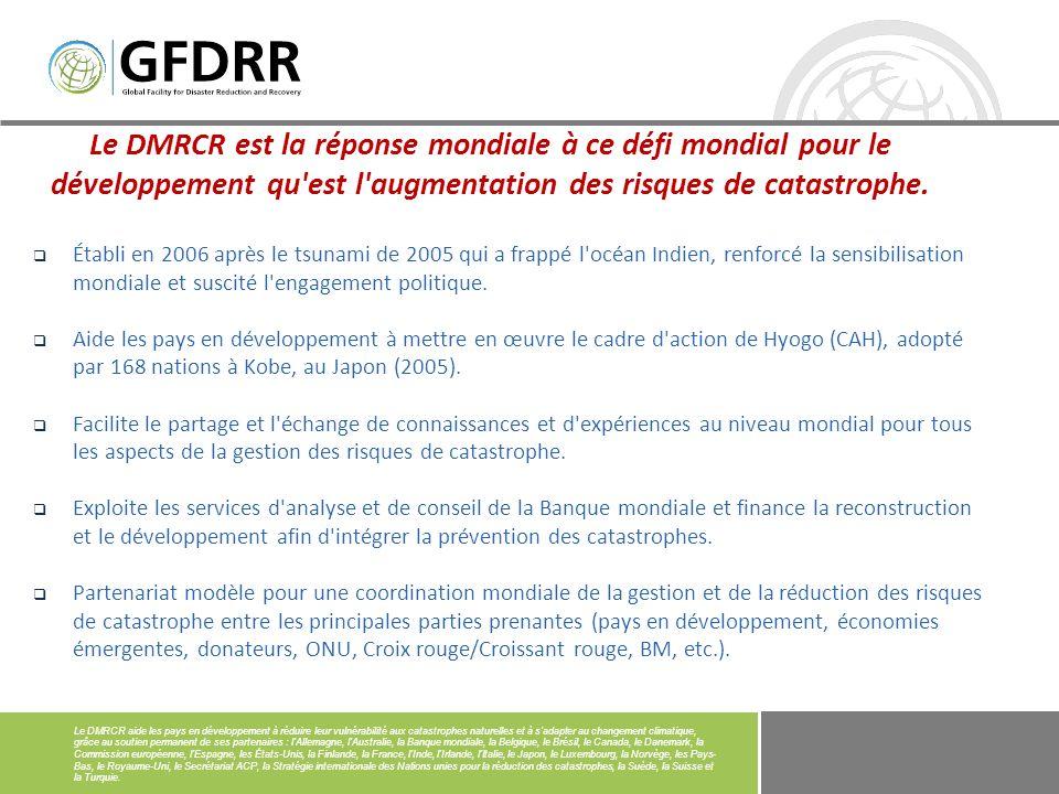 Le Groupe consultatif du DMRCR assure la coopération Nord-Sud et Sud-Sud en matière de prévention et de préparation aux catastrophes.